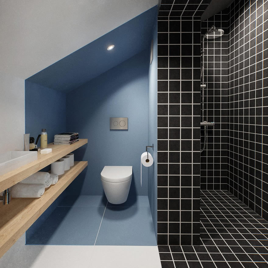 Am nagement de combles guide photos et prix au m 2018 for Amenagement salle de bain avec toilette