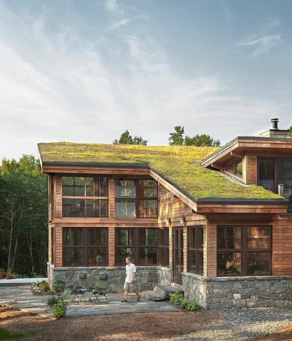 toiture végétalisée maison